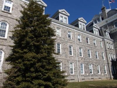 Ilex opaca in front of Parrish Hall