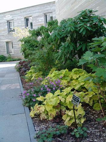 Gold Medal Garden. photo credit: R. Robert