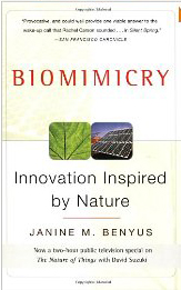 biomimcry