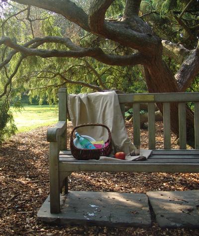 picnic 009