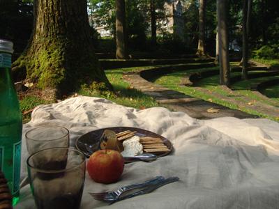 picnic 044