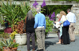 Perennial Plant Conference attendees inspect T. grandifolia (1) JWC