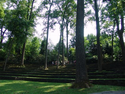 A number of hemlock trees border Scott Outdoor Amphitheater. photo credit: R. Robert