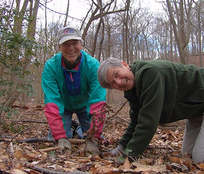 Volunteers Ted Patterson and Ann Ainsworth planting oaks during spring plant out in the Crum Woods. photo credit: R. Robert