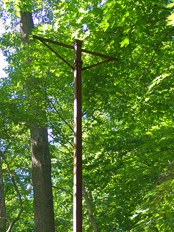 rusted Telephone pole in woods