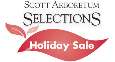 SAS Holiday Sale Logo