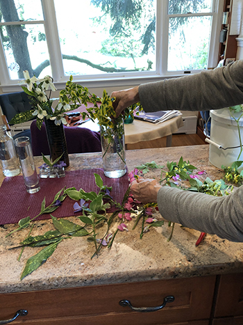 Taking cuttings and placing in vases.